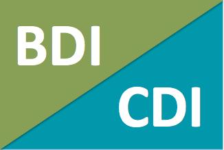 icon-BDI-CDI