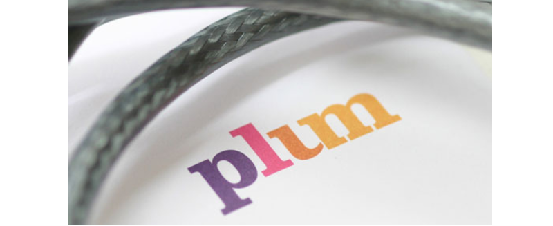 logotype-plum